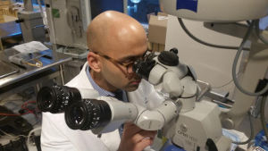 Dr Jaspreet Rayat