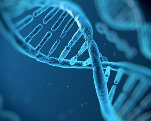DNA Helix AMD Glaucoma Spotlight