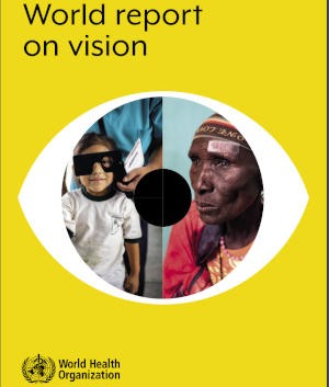 WHO Vision Report