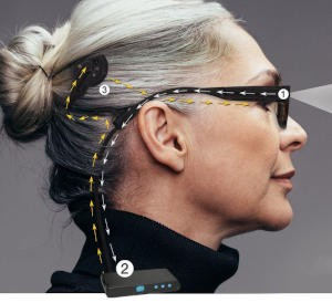 Bionic Eye System
