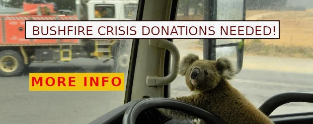 Bushfire Crisis Donations Needed